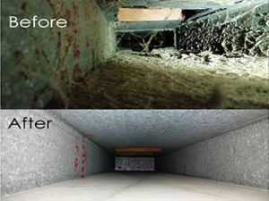 AC Duct Cleaning Dubai Sharjah Abu Dhabi UAE, Air Duct Cleaning, AC Cleaning, Air Conditioner Cleaning, Air Duct Cleaning Cost, Air Duct Cleaning Services, A/C Duct Cleaning, HVAC Duct Cleaning, Air Conditioning Cleaning Ducts, Air Conditioning Duct Cleaning, AC Vents Cleaning, AC Filter Cleaning, Air Duct Cleaning Tools, AC Duct Cleaning In Dubai, Dubai AC Duct Cleaning, Air Duct Cleaning Near Me, AC Cleaning Dubai, A/C Cleaning Dubai, A/C Duct Cleaning Dubai, Dubai AC Cleaning, Dubai AC Company, AC Company In Dubai, Air Duct Cleaning Dubai, AC Cleaners, AC Duct Cleaning Service, AC Mold Cleaning, Duct Disinfection Dubai, AC Duct Cleaning Company, AC Duct Cleaning Companies, HVAC Duct Cleaning Services, Air Conditioner Cleaning Dubai, Air Conditioning Cleaning Dubai, AC Vent Cleaning Cost, AC Cleaning Company Dubai, AC Duct Cleaning Companies Dubai, AC Duct Cleaning Dubai Price, AC Filter Cleaning Dubai, AC Coil Cleaning Dubai, Air Conditioning Duct Cleaning Dubai, HVAC Duct Cleaning Dubai, HVAC Vent Cleaning Services, AC Duct Cleaning Services Dubai, AC Cleaning Price Dubai, AC Duct Cleaning Companies In Dubai, AC Cleaning And Disinfection Dubai, Duct Cleaning Companies In Dubai, AC Deep Cleaning Dubai, AC Cleaning In Dubai, AC Cleaning Service Dubai, AC Disinfection Dubai, A C Cleaning Dubai, Best AC Duct Cleaning Dubai, AC Cleaning Experts Dubai, AC Cleaning & Disinfection Service, AC Duct Cleaning And Disinfection, AC Duct Cleaning Service In Dubai, Air Duct Cleaning Service In Dubai, AC Duct Cleaners Dubai, A C Ducting Cleaning and Disinfection Dubai, Aircon Cleaning in Dubai, Aircon Cleaning Service Dubai, Dubai Aircon Cleaning, Aircon Duct Cleaning Dubai, AC Duct Cleaning Dubai, Air Duct Cleaning Service Dubai, AC Duct Cleaning Company Dubai, Air Duct Cleaning Company Dubai, AC Duct Cleaning Price Dubai, Duct Cleaning Company Dubai, Duct Cleaning Service Dubai, AC Cleaning Dubai Cost, AC Disinfection Service Dubai, AC Duct Cleaning And Disinfection Dubai, Duct Cleaning Specialist Dubai, AC Deep Cleaning Service Dubai, Aircon Cleaning Company In Dubai, Air Conditioning Service Dubai, Air Conditioning Maintenance Dubai, A/C Cleaning Company Dubai, A/C Cleaning Service Dubai, Dubai Air Duct Cleaning Service, Dubai AC Cleaning Company, Dubai AC Duct Cleaning Service, Air Conditioner Duct Cleaning Dubai, Air Conditioner Cleaning In Dubai, Dubai A/C Cleaning Company, Dubai AC Cleaning Price, Dubai AC Duct Cleaning Price, Duct Cleaning Company In Dubai, Duct Cleaning Cost Dubai, Central AC Cleaning Dubai, Central AC Duct Cleaning Dubai, Top AC Cleaning Dubai, Top AC Duct Cleaning Services Dubai
